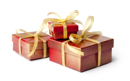 Holiday Gift Ideas - Ovation Hair